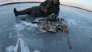 Весенняя рыбалка последний лёд Жирная Плотва и окунь на мелководье Белоярское водохранилище апрель