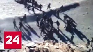 Столкновение на границе: Пекин и Нью-Дели пытаются снизить напряженность - Россия 24