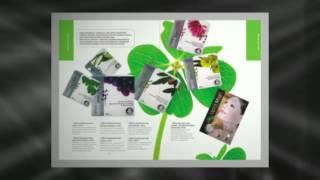 Секреты Лан Каталог(Секреты Лан Каталог смотреть здесь http://kitkos.ru/photoalbums Секреты лан представляет свою продукцию в двух каталога..., 2013-10-19T15:26:29.000Z)
