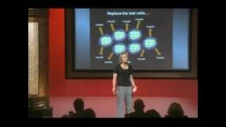 From Stem Cells to Beta Cells: Maike Sander, M.D. at TEDxDelMar
