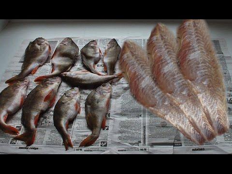 """Сушка рыбы классическим """"ленивым"""" способом."""
