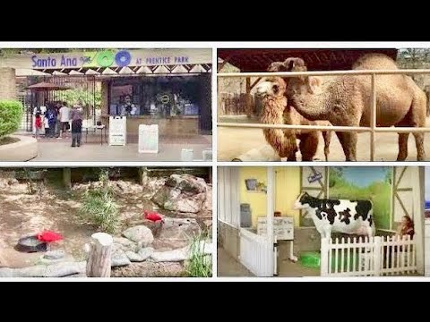 - Santa Ana Zoo, Santa Ana, California