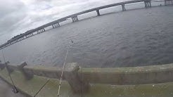 Fishing George Crady Bridge Fishing Pier State Park 8/2/2015