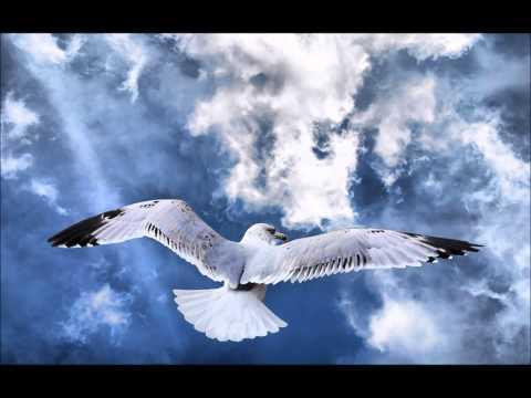 Geotic (Baths) - Realms (Full Album)