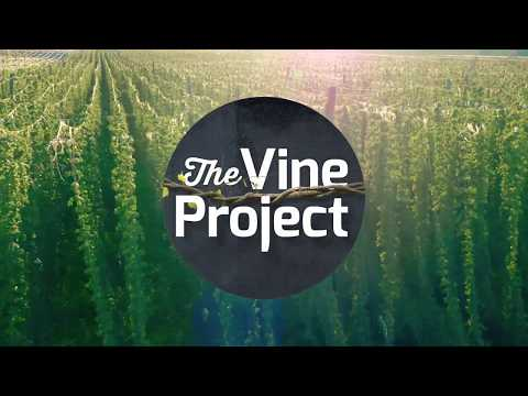 The Vine Project in the US