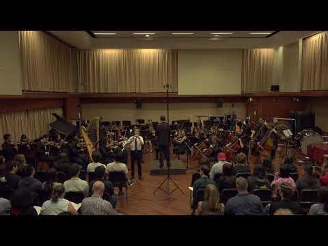 Mozart Horn Concerto no. 1 in Eb Major   Daniel Seaman, horn