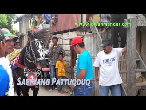 """Saeyyang Pattuqduq """"Kuda Menari"""" di Mandar"""