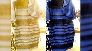 Какого цвета платье — синего или