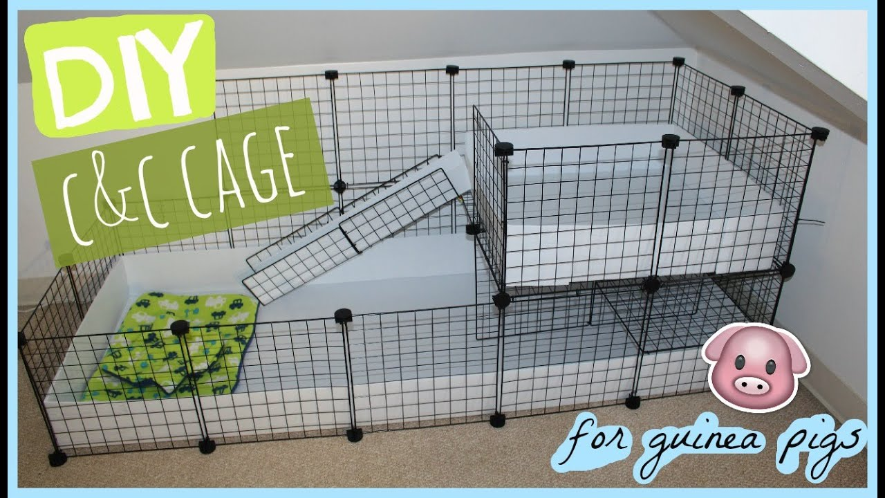 diy c c guinea pig cage alexandriasanimals youtube