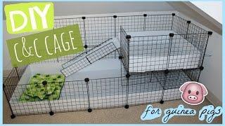 DIY C&C guinea pig cage │Alexandriasanimals