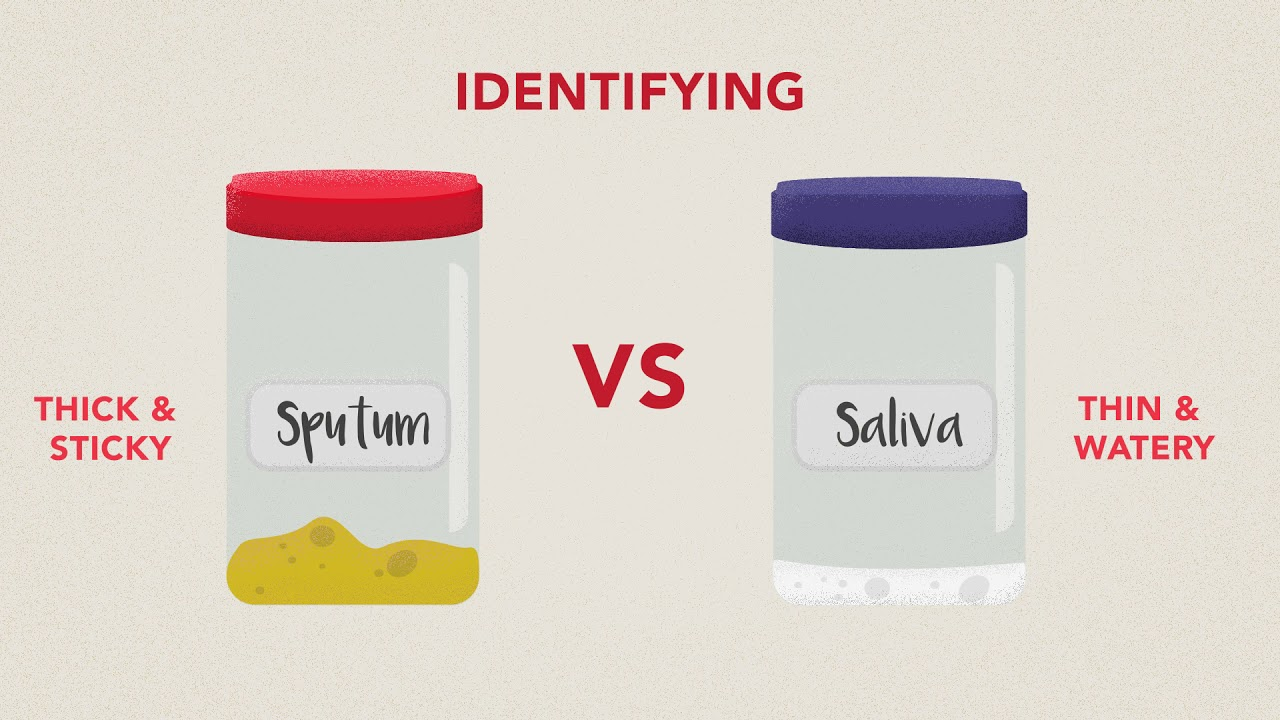 Sputum Collection with English Subtitles - YouTube
