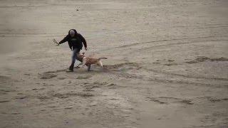 Смотреть клип Нигатив - Дождь