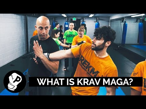 What Is Krav Maga? | Puncher's Martial Arts 101 | Interview With Roy Elghanayan