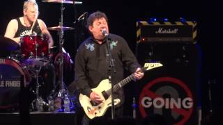 Stiff Little Fingers - Wasted Life (Live, HD)
