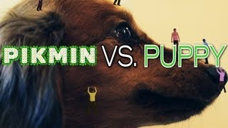 Pikmin vs. Puppy
