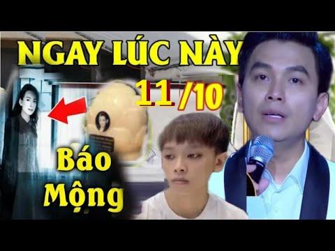 Download ⚡LẠNH GÁY: Phi Nhung Về 'BÁO MỘNG' Gặp Mạnh Quỳnh 'HÉ LỘ' Về Hồ Văn Cường Van Xin 1 Điều Cuối