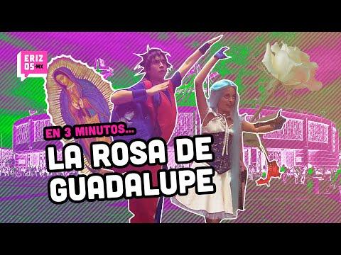La Rosa de Guadalupe... | En 3 minutos... | Erizos