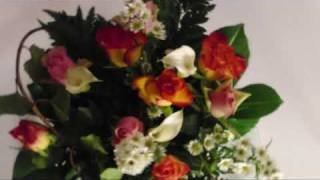 FloraPrima.de Blumenversand im Test - FloraKing.de
