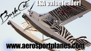 BushCat low cost light sport aircraft $49,000 ready to fly, SkyReach Bush Cat, AeroSport Aviation.