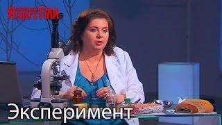 Эксперимент   Холодильник