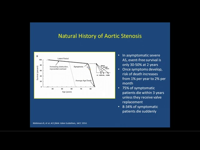 Aortic Stenosis: A Brief Overview