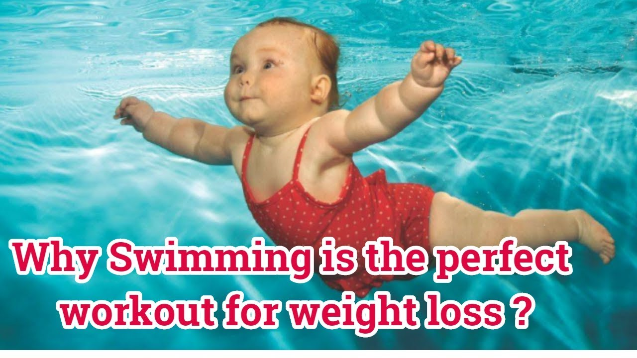 Why Is Swimming The Perfect Workout For Weight Loss Swimming To Lose Belly Fat Full Body