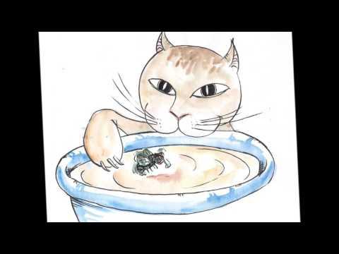 Il était Un Petit Chat Miaou Miaou