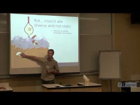 Brent Sinclair: Why It's So Hard to Model the Response of the 'Average' Insect to Climate Change