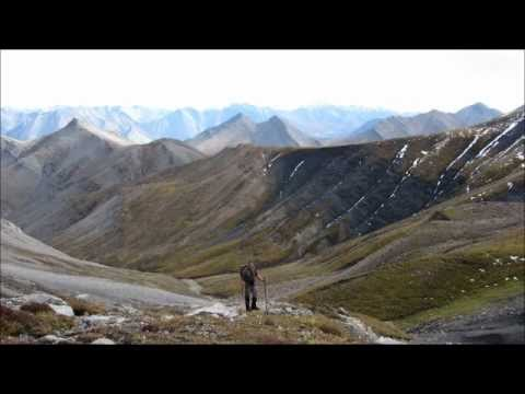 Hunting Dall Sheep, Caribou, Moose With Arctic Red River Outfitters, NWT, Canada #8