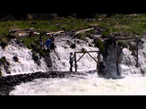 Native American Building Fishing Scaffold On Deschutes River