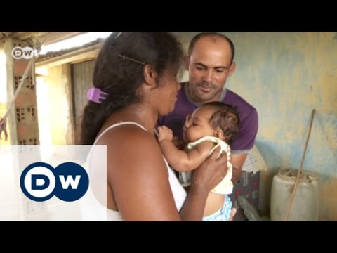 Brazil in Battle against Zika Virus   DW News
