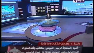 بالفيديو.. أستاذ جامعي يطالب بمحاكمة وزير الزراعة