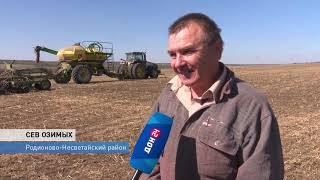 Новый рекордный урожай закладывается сегодня: идет сев озимых