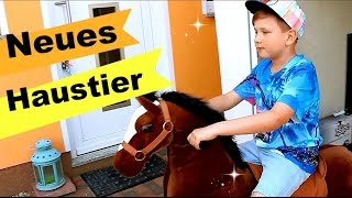 UNSER neues HAUSTIER! | Animal Riding | 9999 Dinge