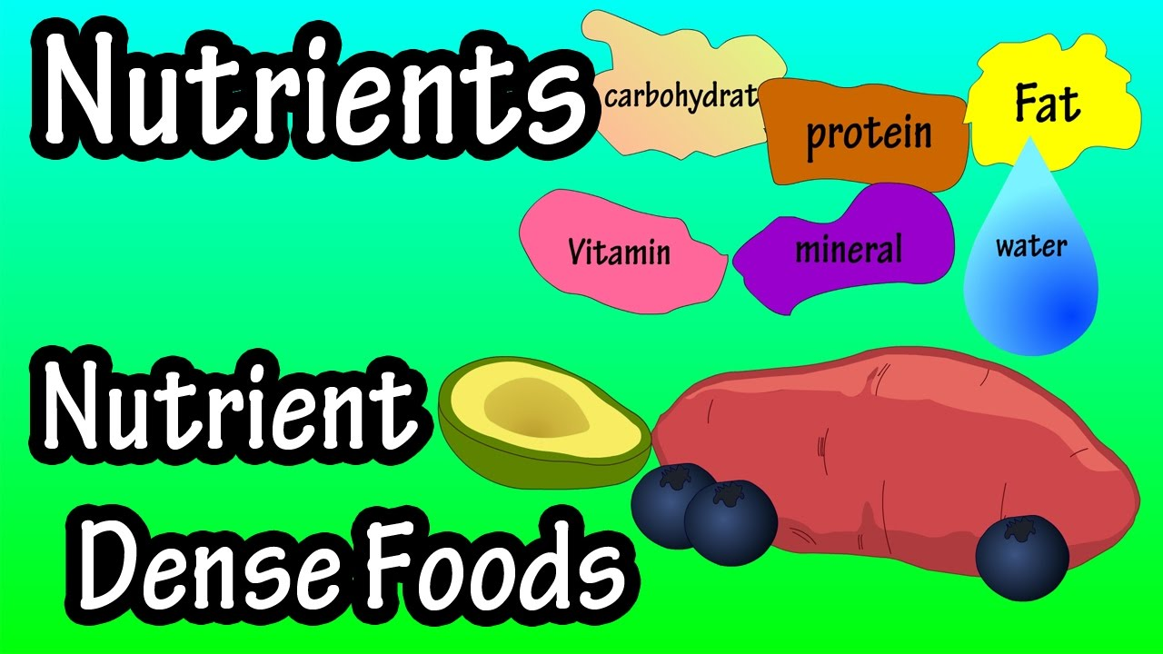 What Are Nutrients What Is Nutrient Density What Are Nutrient Dense Foods Youtube