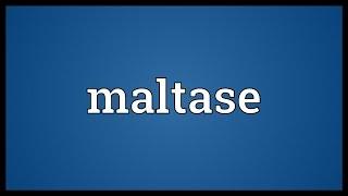 Maltase Meaning