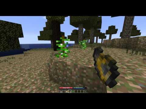 TerraFirmaCraft - 1.Bölüm - Zor Başlangıç