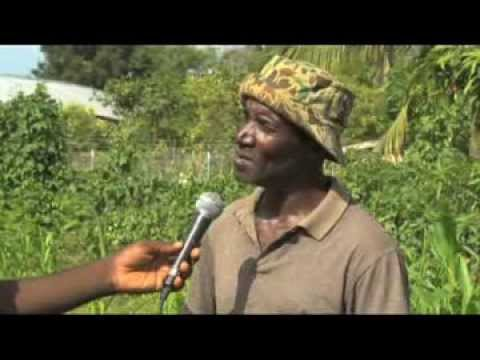 RADIO TELEVISION CARAIBES - Petro Caribe - Le Rembourssement ( Documentaire )