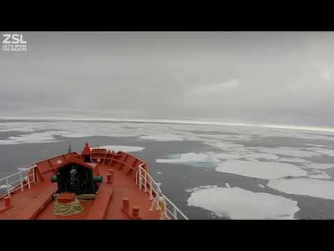 Mapping the seafloor of west Greenland