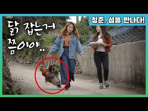 외국인 유학생들, 난생 처음 한국 섬에 가다! #옥도 #신안군 (2016년 제작) [청춘, 섬을 만나다!]