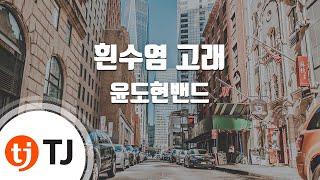 [TJ노래방 / 여자키] 흰수염고래 - 윤도현밴드 / …