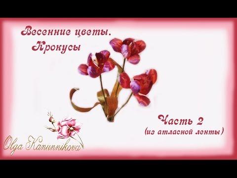Видео Весенние цветы из красной книги