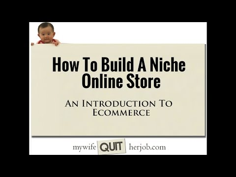 How To Build A Niche Online Store And An Introduction To Ecommerce
