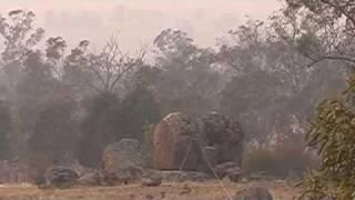 Aeolian harp after bushfires