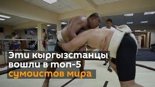 Эти кыргызстанцы вошли в топ-5 сумоистов мира — эффектное видео