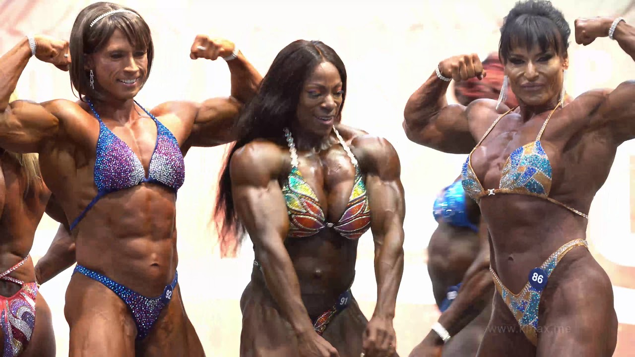 celebrated ifbb pro bodybuilder - 1280×720
