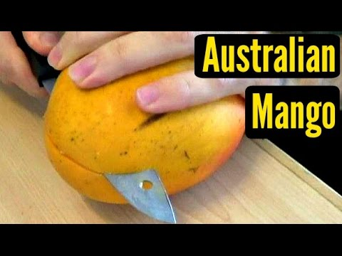 Australian Mango - Weird Fruit Explorer - Ep 105