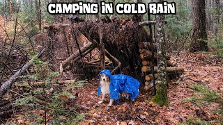 Camping in the C๐ld Autumn Rain with My Dog