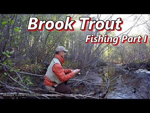 Brook Trout Fishing New Brunswick Canada 2020