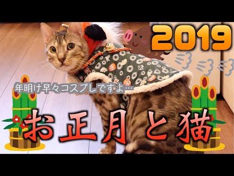 あけましておめでとうございます!ルトとロゼのお正月パーティー\(^-^)/